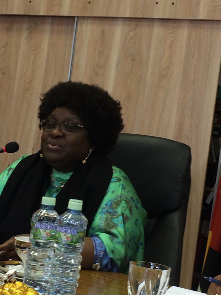 Визит официальной делегации из Республики Мозамбик — Москва 21.08.2019